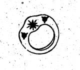 Накшатра #14: Читра. Символ: Жемчужина или блестящая драгоценность. Перевод названия: Сверкающий, ясный. Дэвата: Тваштри (Небесный Зодчий) или Вишвакарма (Бог Васту). Характер: мягкая. Упр. по ВД: Мангала (Марс). Тиб. эл-т: ветер.